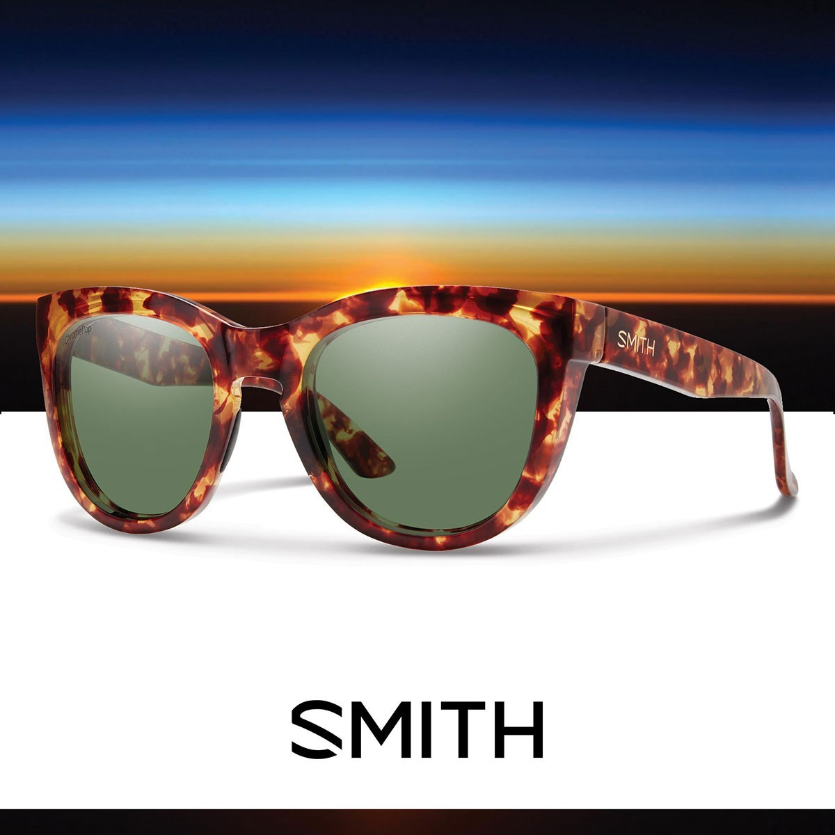 SMITH SIDNEY Yellow Tortoise - Изображение - AQUAMATRIX